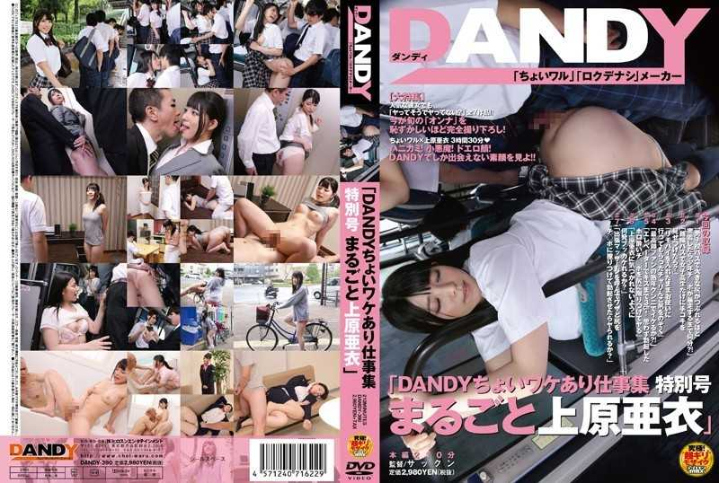 "DANDY-390 ""Ai Uehara Whole Work Collection Special Issue There DANDY Wake Choi"" - Planning, Various Professions"