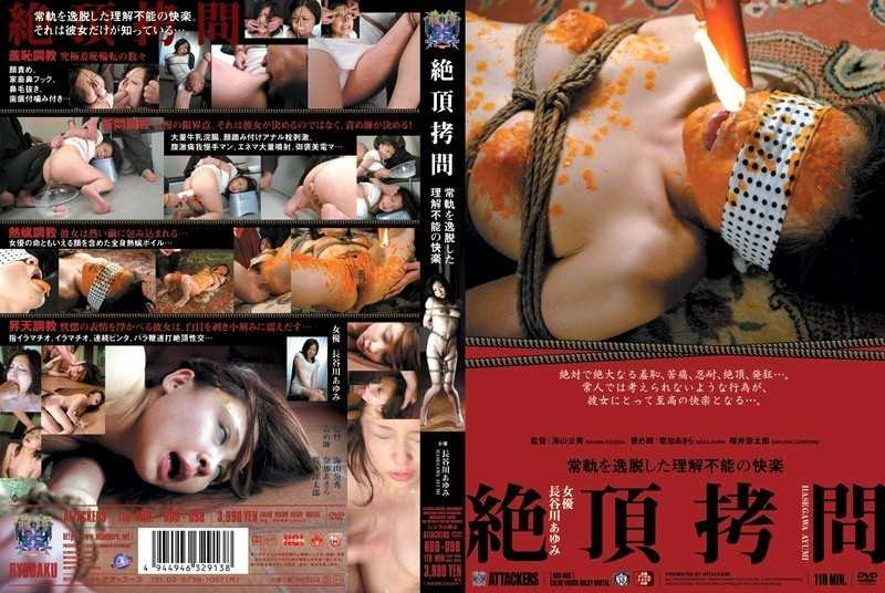 RBD-098 Ayumi Hasegawa Pleasure Of Torture Can Not Be Understood That Deviate From The Normal Course Capstone - SM, Restraints